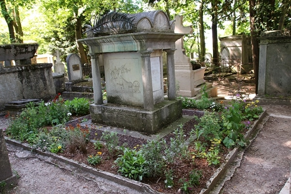 a grave surrounded by plants