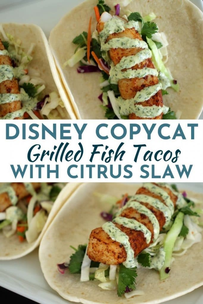 Grilled fish tacos with cilantro-lime mayo drizzled over the top, served over citrus claw with fresh cilantro leaves, on flour tortillas