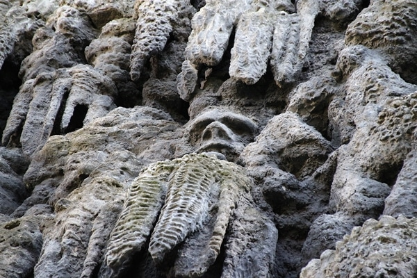 a stone wall with a hidden face in the rocks