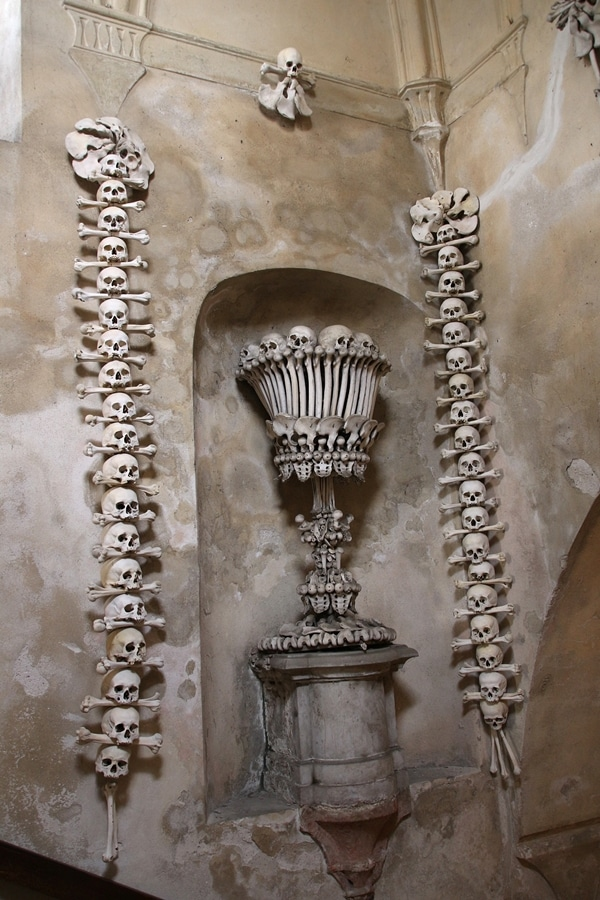 wall decorations made with bones