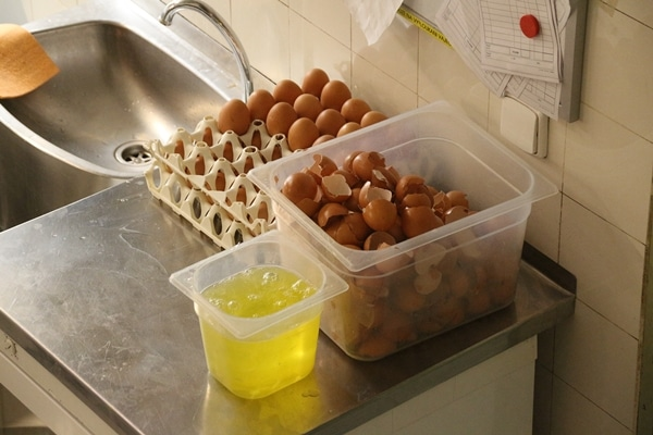 a bunch of egg shells in a plastic bin with egg whites in another plastic bin