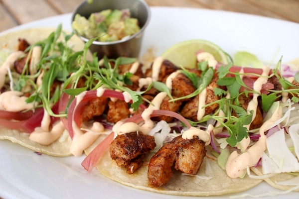 close up of fish tacos on a white plate