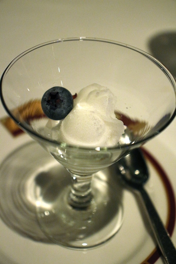 a small cocktail glass with a scoop of sorbet and a blueberry