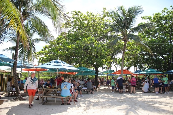 picnic tables with colorful umbrellas under palm trees