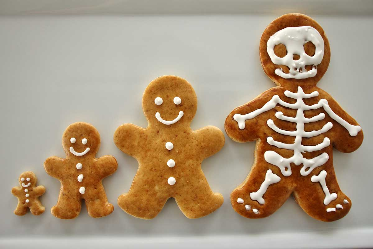 Gingerbread man cookies arranged from smallest to largest on a white plate.