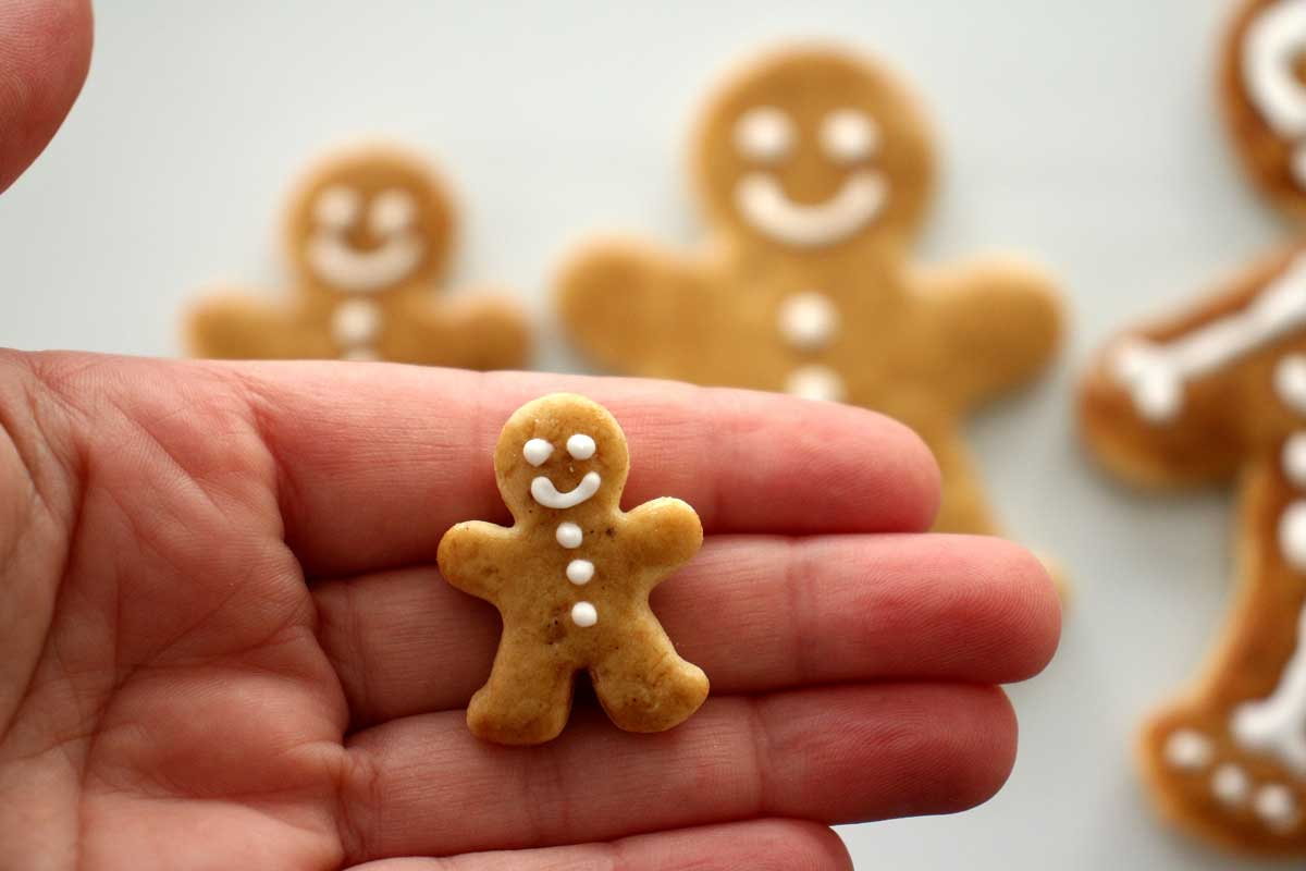 Closeup of a tiny gingerbread man cookie on the palm of someone's hand.