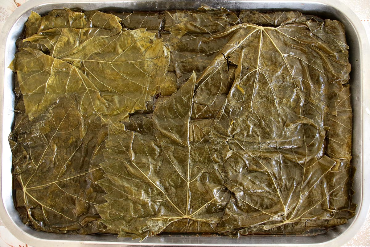 A baking pan covered with a layer of grape leaves spread out like a blanket
