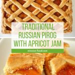 Photo collage of Russian apricot pirog