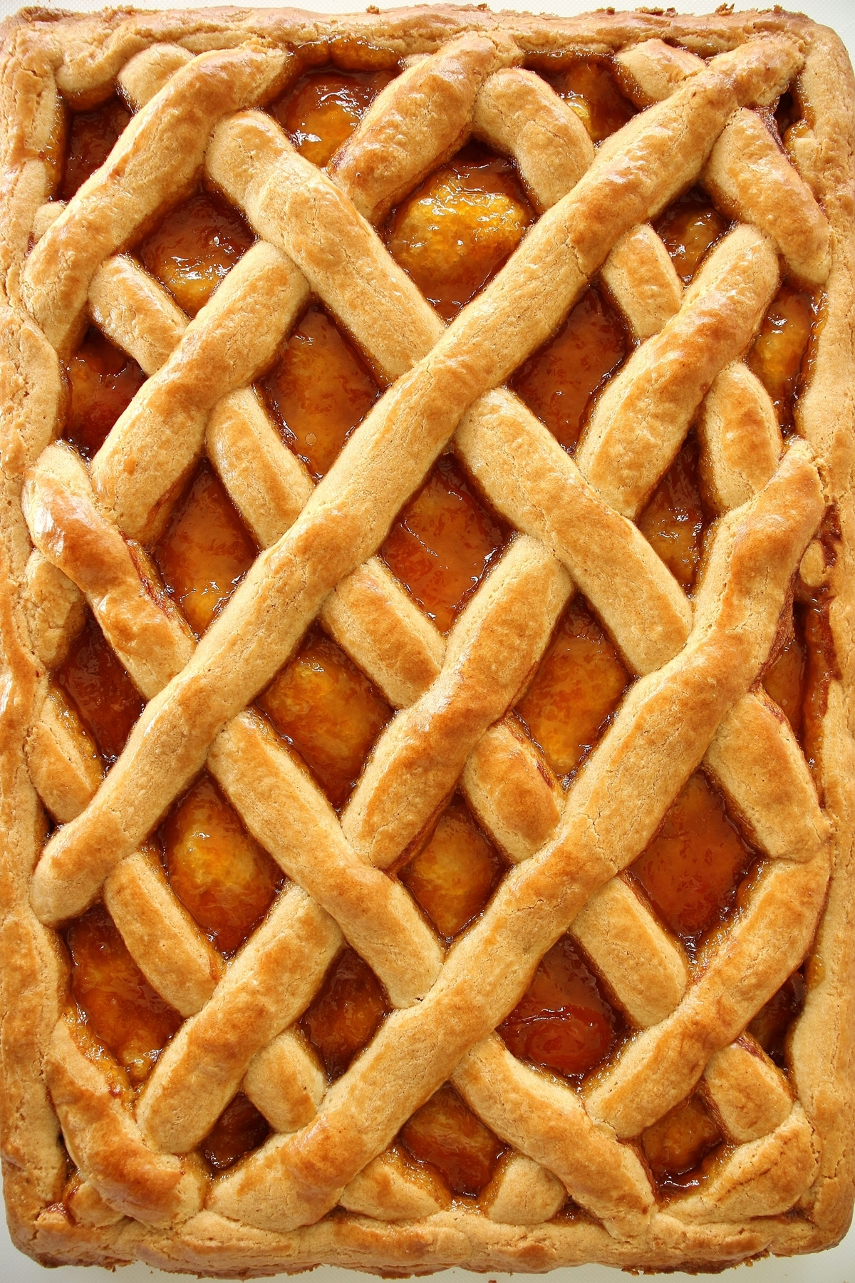 Russian style slab pie with lattice top and apricot preserve filling