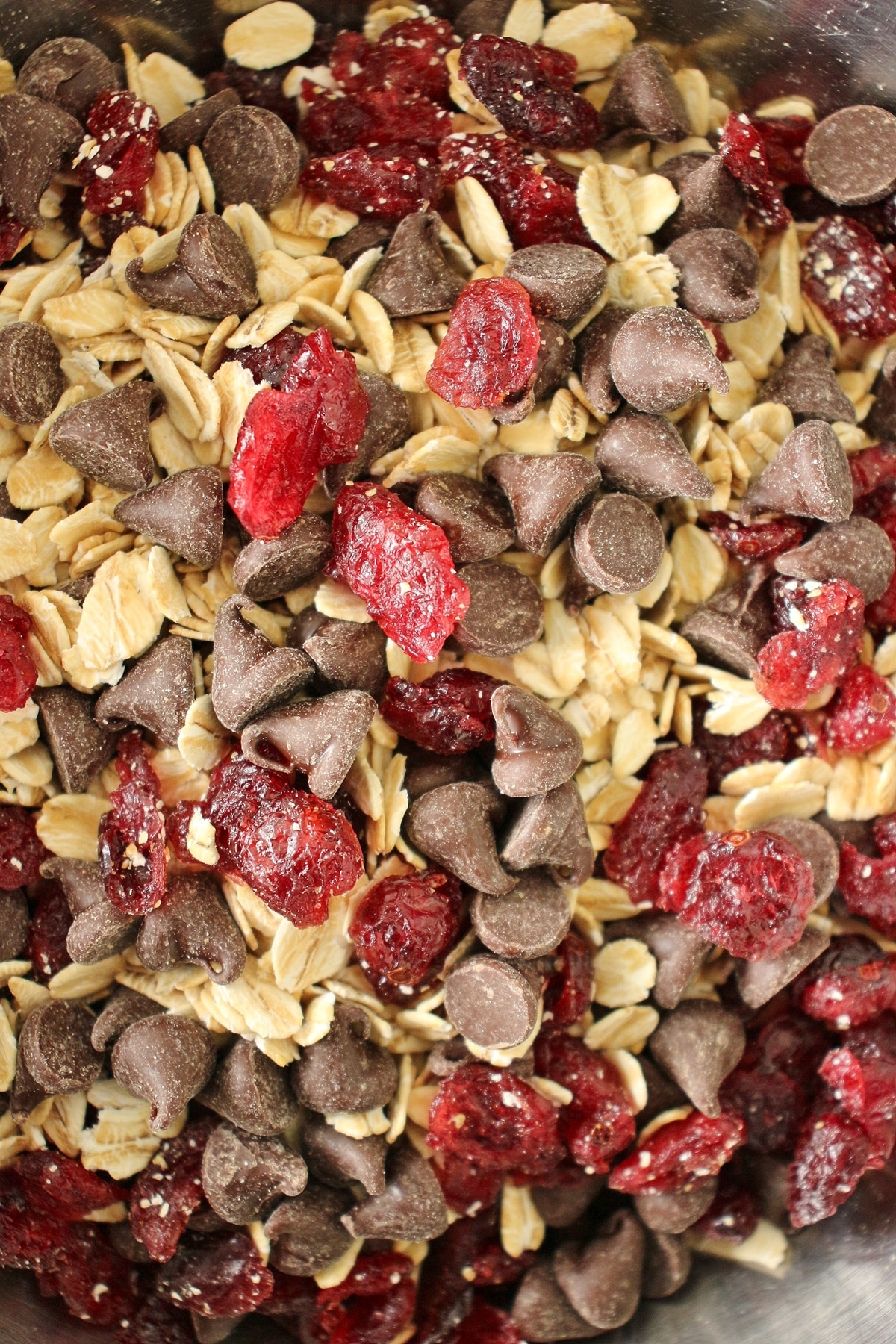 A combination of dried cranberries, chocolate chips, and oats in a mixing bowl.