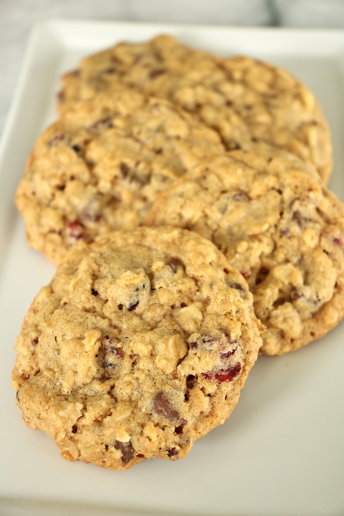 Closeup of 5 oatmeal cranberry chocolate chip cookies on a rectangular white plate.