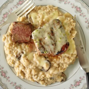 filet mignon with sauce and risotto on fine china