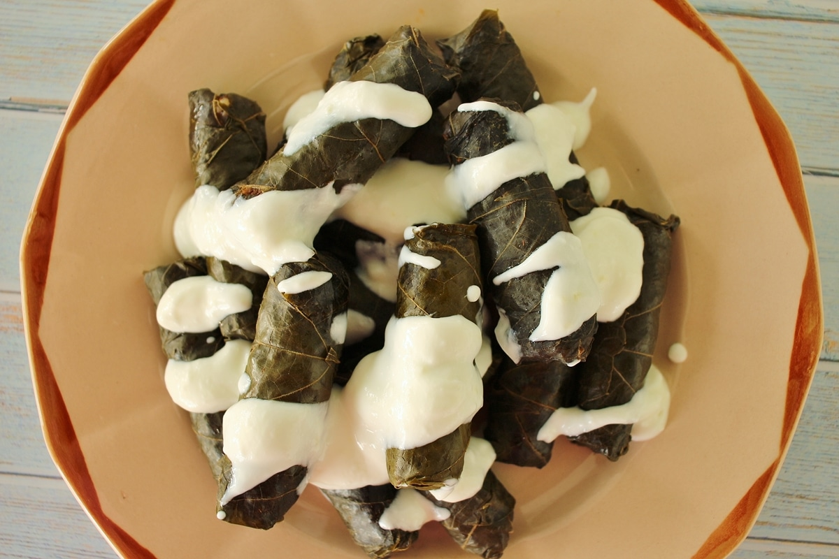 overhead view of dolma (grape leaves) drizzled with yogurt and garlic sauce on antique plate