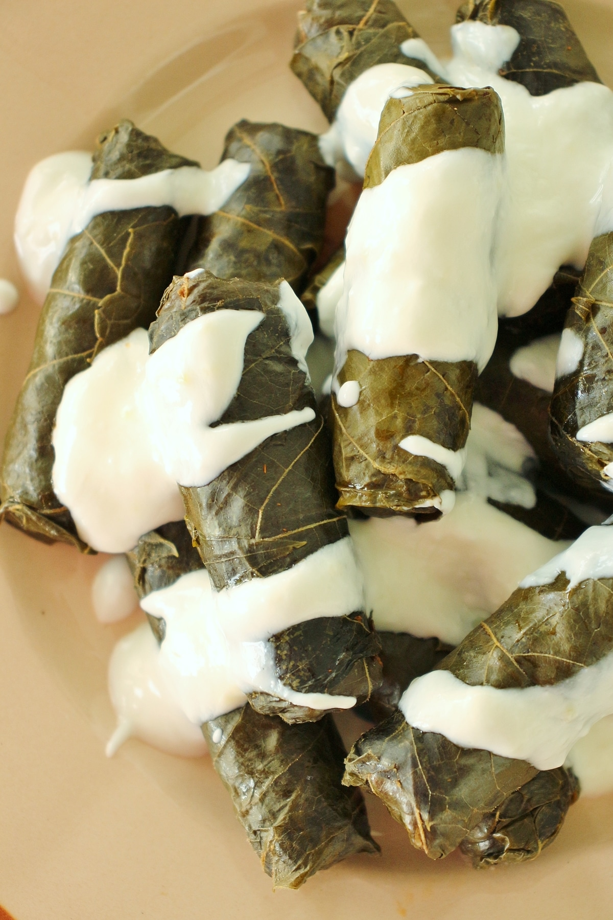 Dolma Stuffed Grape Leaves With Meat And Rice Mission Food Adventure