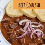 Czech beef goulash with sliced red onion and dumplings on a white plate
