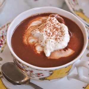 Closeup of a cup of hot chocolate with a dollop of whipped cream on top.